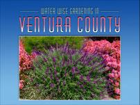 812914255Ventura-Web-Logo-1.jpg