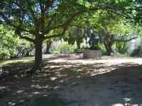 picnic11
