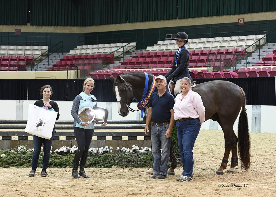 horse show 2017