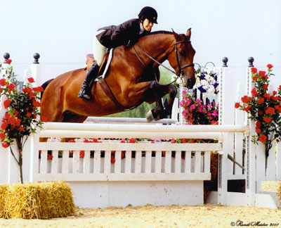 Cathy Sacher jumping a horse