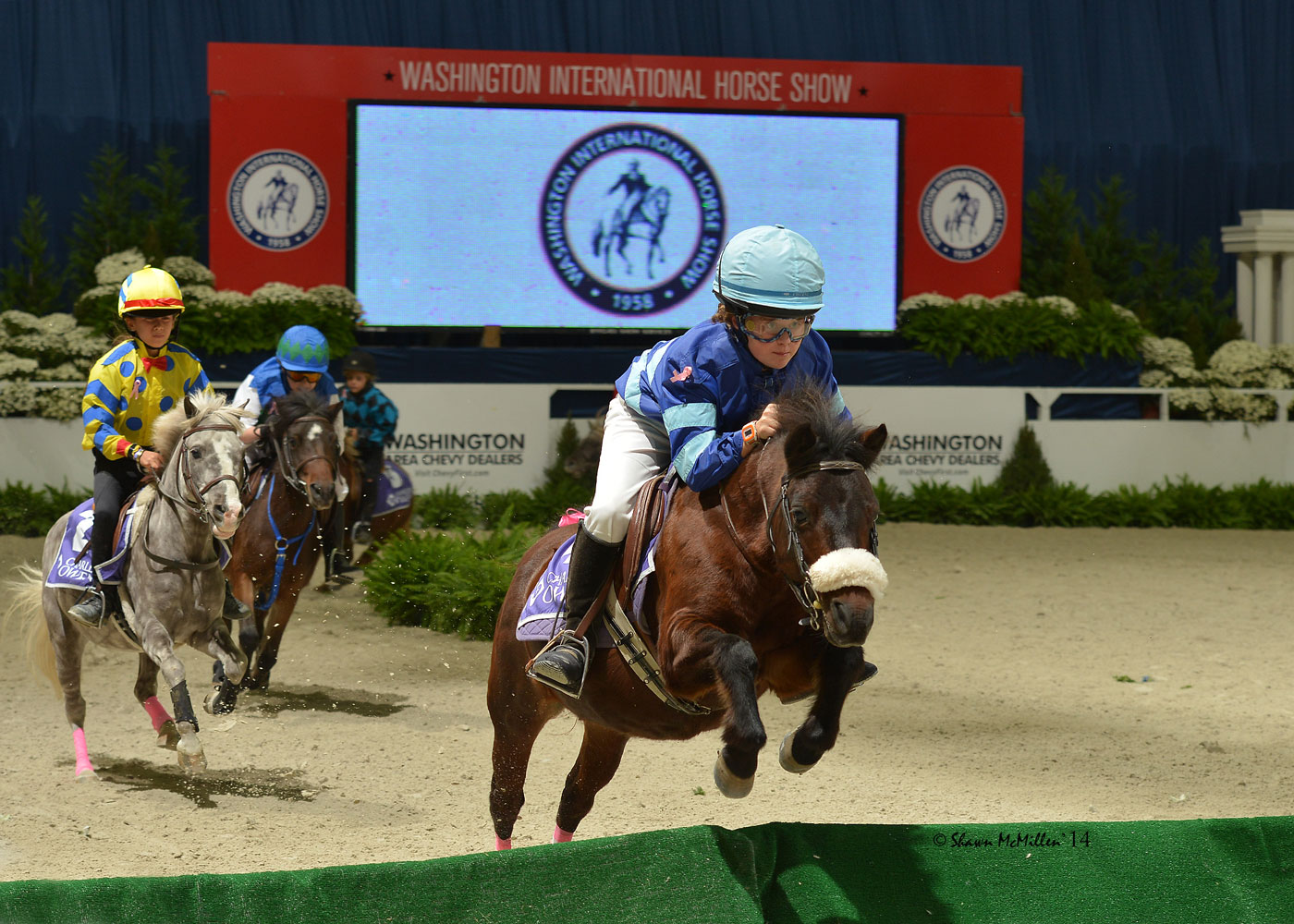 Mini jockeys and Shetland ponies race to the finish line during the 2015 WIHS Shetland Pony Steeplechase Championship.